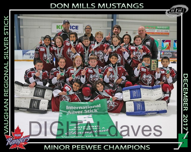 Minor_Peewee_Champs.jpg